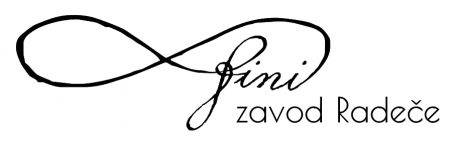 FINI zavod Radeče, work for young people